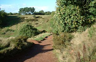 Adams Hill, footpath restoration