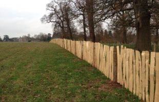 Cleft Chestnut Fencing