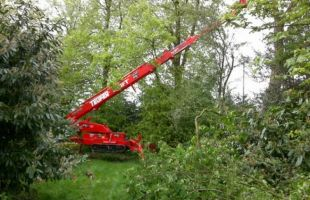 Tree surgery with the aid of a tracked Mewp